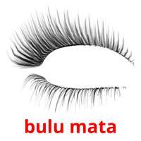 bulu mata picture flashcards