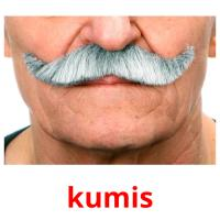 kumis picture flashcards