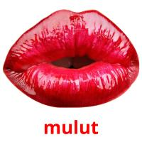 mulut picture flashcards