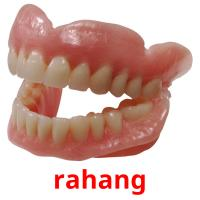 rahang picture flashcards