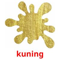 kuning picture flashcards