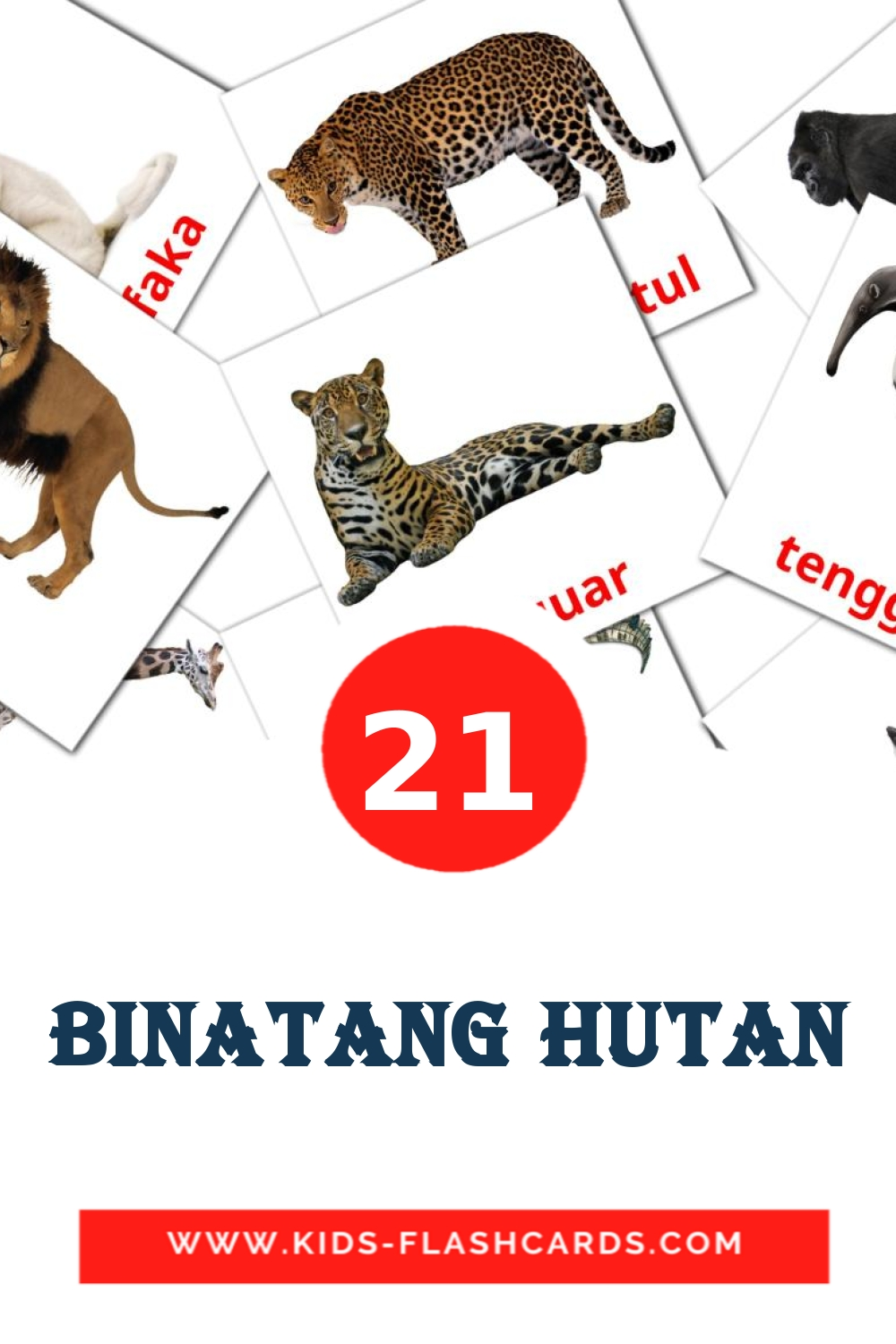 21 Binatang Hutan Picture Cards for Kindergarden in indonesian