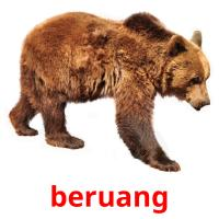 beruang picture flashcards