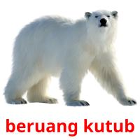 beruang kutub picture flashcards