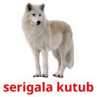 serigala kutub picture flashcards