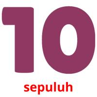 sepuluh picture flashcards