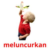 meluncurkan picture flashcards