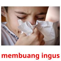 membuang ingus picture flashcards