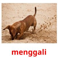 menggali picture flashcards