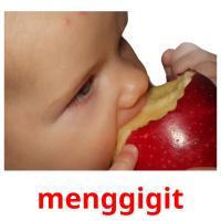 menggigit picture flashcards