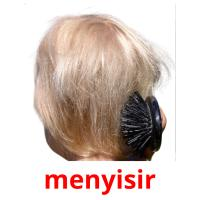 menyisir picture flashcards