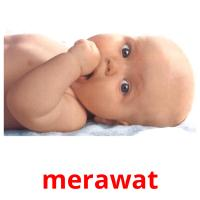 merawat picture flashcards