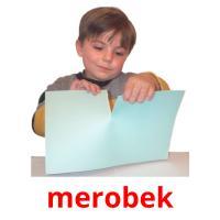 merobek picture flashcards