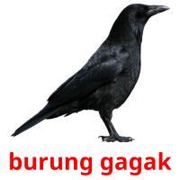burung gagak picture flashcards