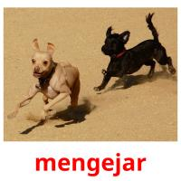 mengejar picture flashcards