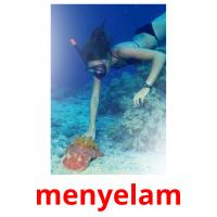 menyelam picture flashcards