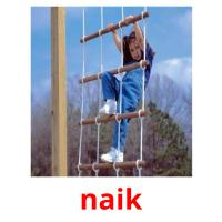 naik picture flashcards