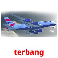 terbang picture flashcards