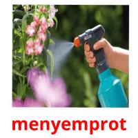 menyemprot picture flashcards