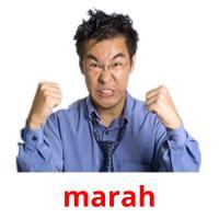 marah picture flashcards