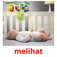 melihat picture flashcards