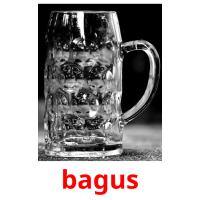 bagus picture flashcards