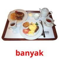 banyak picture flashcards