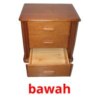 bawah picture flashcards