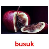 busuk picture flashcards