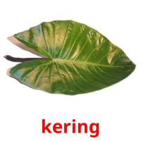kering picture flashcards