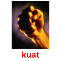 kuat picture flashcards