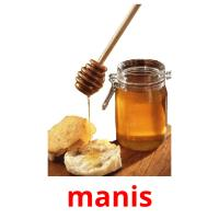 manis picture flashcards