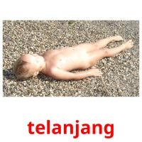 telanjang picture flashcards