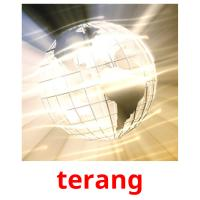terang picture flashcards