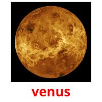 venus picture flashcards