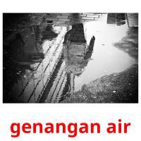 genangan air picture flashcards
