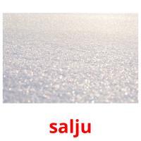 salju picture flashcards