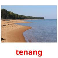 tenang picture flashcards