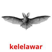 kelelawar picture flashcards