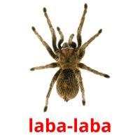 laba-laba picture flashcards