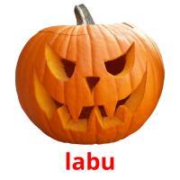 labu picture flashcards