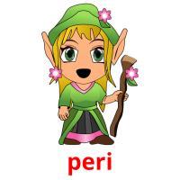 peri picture flashcards