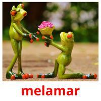 melamar picture flashcards