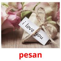 pesan picture flashcards
