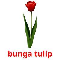 bunga tulip picture flashcards