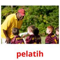 pelatih picture flashcards