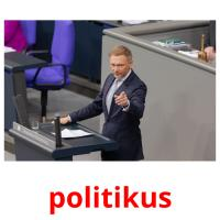 politikus picture flashcards