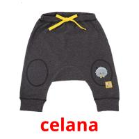celana picture flashcards
