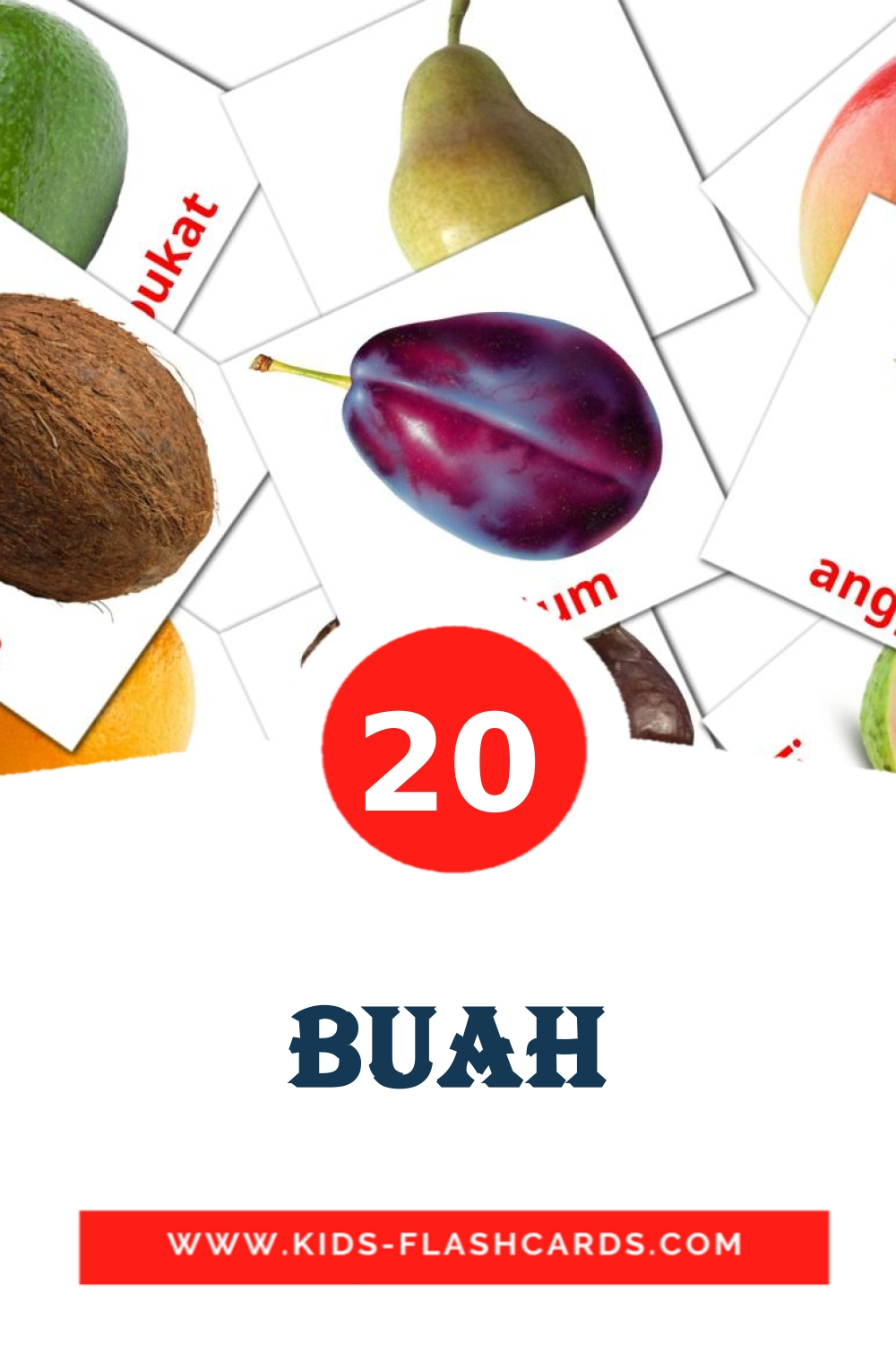 20 Buah Picture Cards for Kindergarden in indonesian