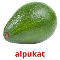alpukat picture flashcards